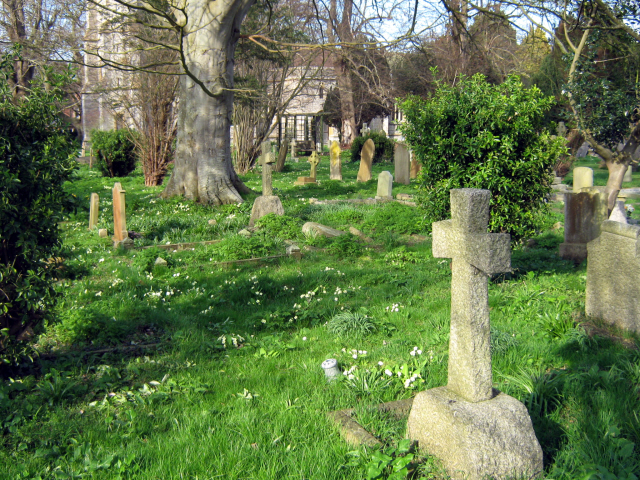 Churchyard, St Peter and All Hallow's, Huntspill