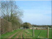ST7156 : End of the Byway by James Ayres