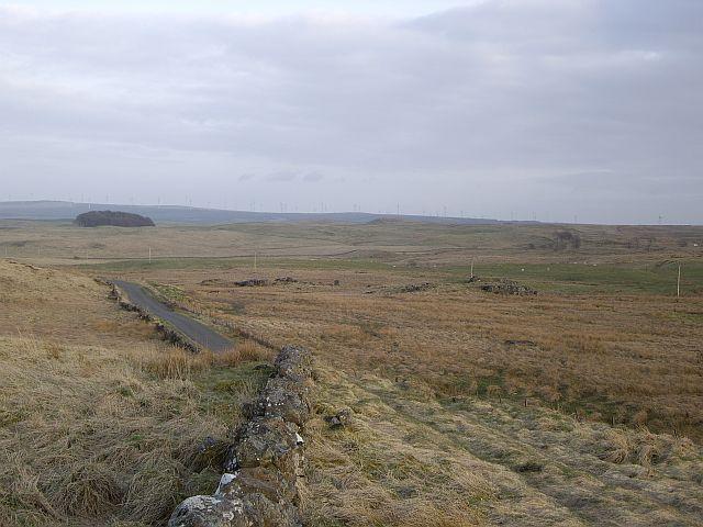 Moor Yett Plantation