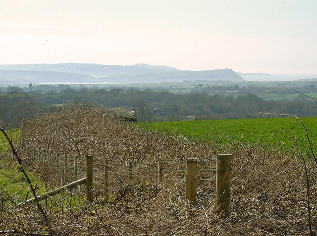 Fields near Nevern