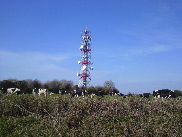 Radio Mast, Co Meath
