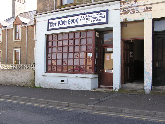 The Fish Bowl, Commercial Road