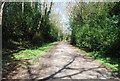 TQ7635 : High Weald Landscape Trail approaching Angley Woods by N Chadwick