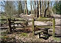 TQ7536 : Stile, High Weald Landscape Trail, Angley Wood by Nigel Chadwick