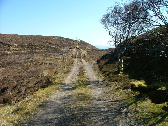 Gate and track to Raasay forest