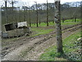SW7750 : Cornish Cyder Farm orchard. by Colin Pyle