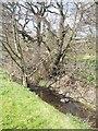 SJ9203 : Waterhead Brook at Moseley by John M