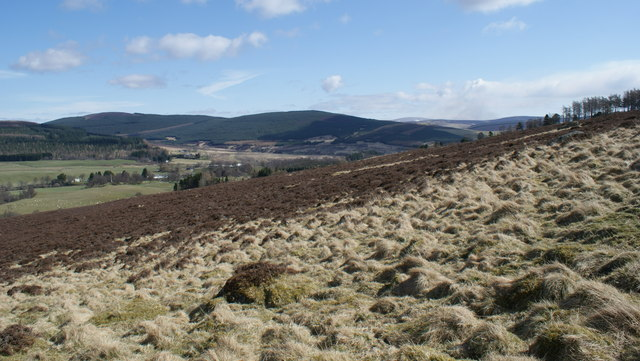 Looking  East  above  Kirkton  of  Glenisla