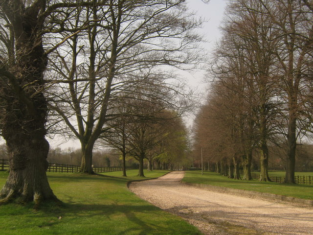 Driveway from Combwell Priory Farm
