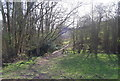 TQ6841 : High Weald Landscape Trail in the bottom of the valley near Brenchley by N Chadwick