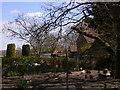 SU9224 : Chicken enclosure by house by Shazz