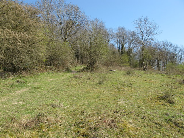 Access land on Bledlow Ridge