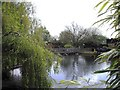 TL1149 : Lake within Frosts Garden Centre, Sandy Lane, Willington by PAUL FARMER