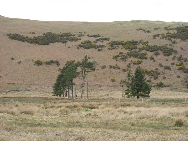 The lower slopes of Bowscale Fell's north-east ridge