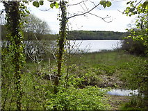 R3586 : Dromore Lough, Co Clare by C O'Flanagan