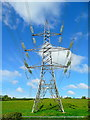 SO7023 : Pylon west of Boulsdon Lane. by Jonathan Billinger