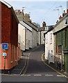SY3492 : Mill Green, Lyme Regis : Week 17