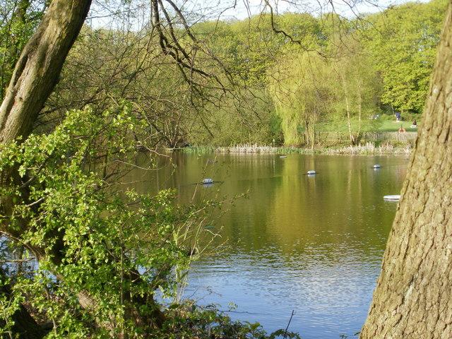 Kenwood Ladies' Bathing Pond