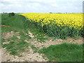 TF4218 : Rape west of Tydd St Mary by Richard Humphrey