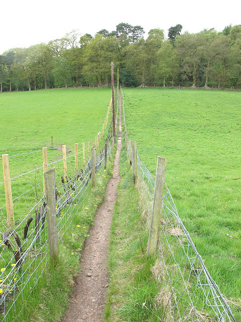 Footpath to the Wizard