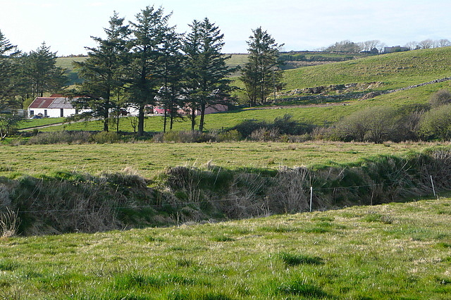 Pastures at Cloonlaheen West