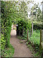 TQ4361 : Looking from The Sandwalk towards The Walled Garden by Basher Eyre