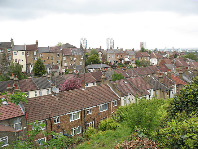 Roofs of Roydene Road