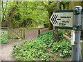 SU9069 : Sandy Lane, North Ascot by Colin Smith
