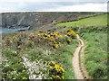 SW5943 : Coast path near Navax Point by Philip Halling