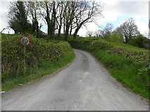 H2418 : Road at Mullanacre Lower by Kenneth  Allen