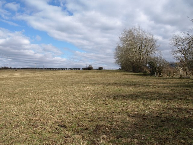Field near Cullyhall Farm