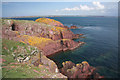 SM7405 : East Bay, Skokholm by Bob Jones