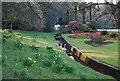 TQ8010 : Roar Gill, Alexandra Park by N Chadwick