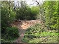 SP1096 : Quarry near Keeper's Pool, Sutton Park by Robin Stott
