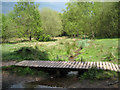 SP1096 : Footbridge over Plants Brook, Sutton Park by Robin Stott