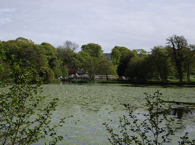 Culzean Castle - Swan Pond