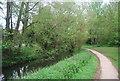 TQ1730 : Riverside path, River Arun, Horsham by N Chadwick
