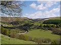 SN7874 : Spring comes to Cwm Ystwyth : Week 20