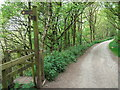 SJ8962 : Gritstone Trail signpost at Timbersbrook by Raymond Knapman