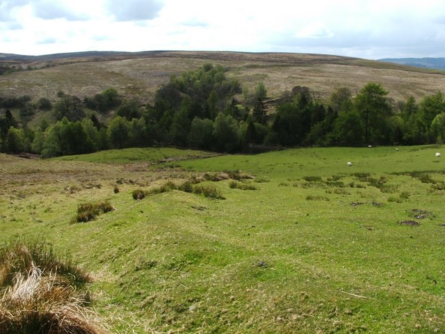 Field dyke associated with old farmstead