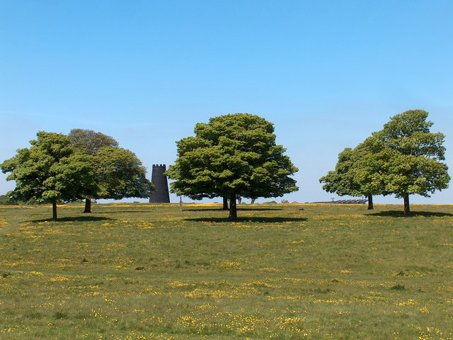 The Black Mill on Beverley Westwood
