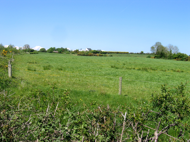 Pasture east of the R741, Ballyknocken, Co. Wexford