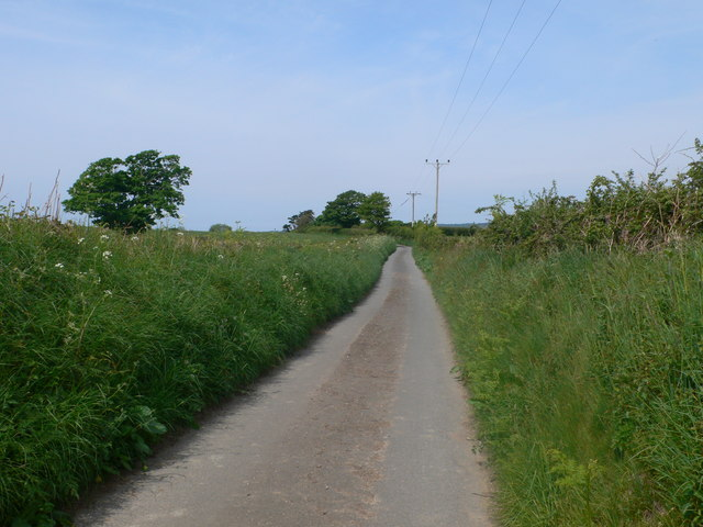 Minor road leading to Tyn Buarth and Cae Tocyn