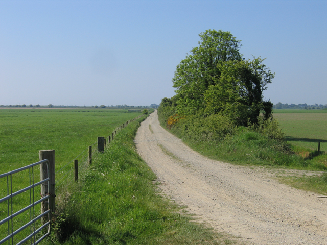 Private road through the Wexford Slobs
