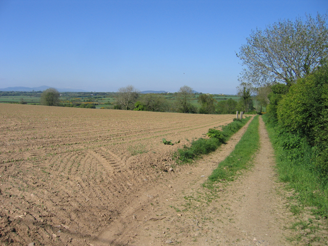 Arable farmland near Tullerstown, Co. Wexford