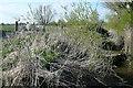 R3669 : Ditch at Ballygirreen by Graham Horn