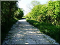 SU9804 : Public footpath 355 by Peter Holmes
