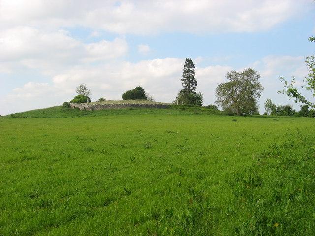 Church site and graveyard at Kilcooly, Trim