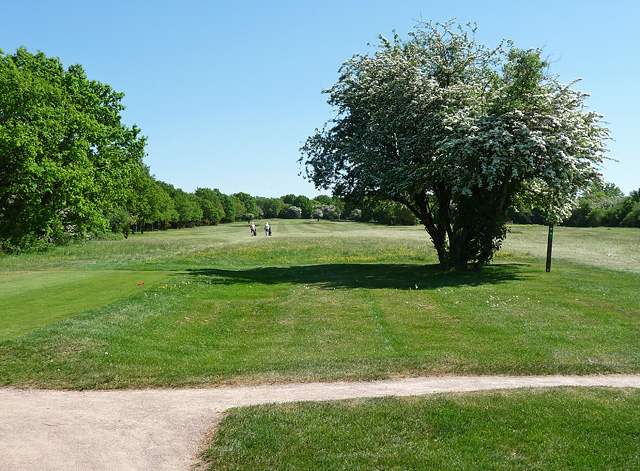 Golf Course, Belmont
