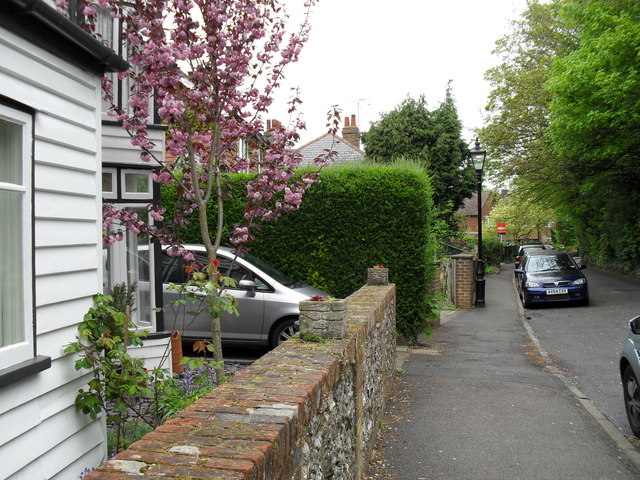 Spring in High Elms Road